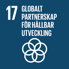 17. Globalt partnerskap för hållbar utveckling