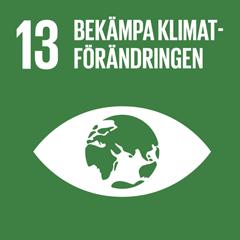 13. Bekämpa klimatförändringen